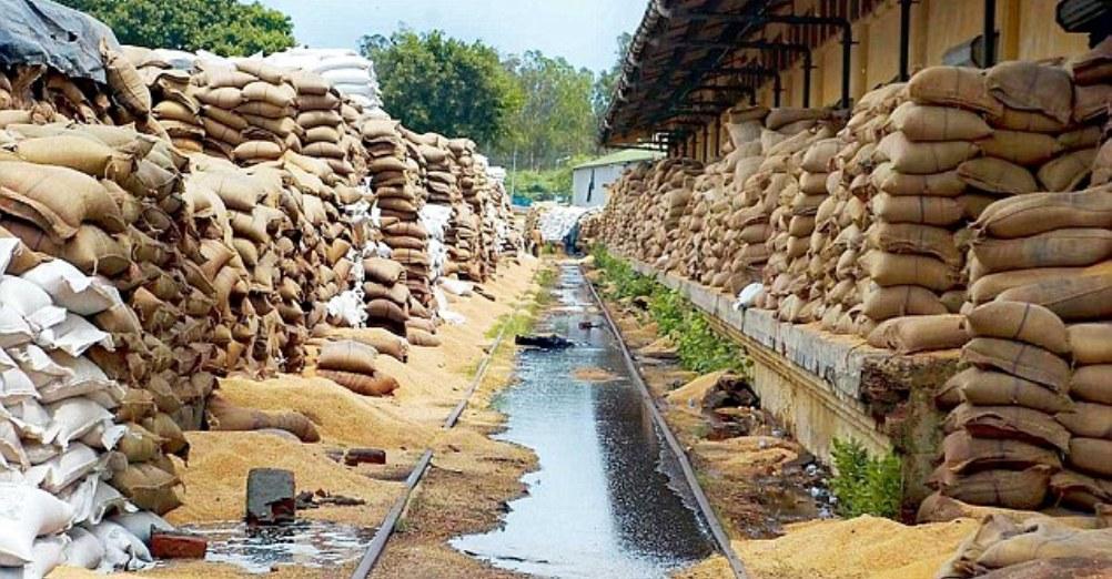 Food Grain Storage Problem in India